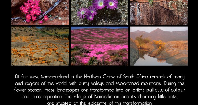 2017 Photography workshops with Mark Kelly and Robert Postma